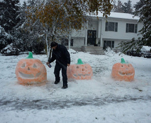 Funny photos funny snow pumpkin winter