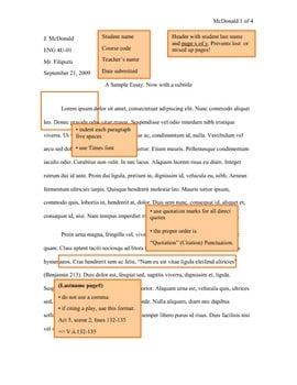 Sample MLA Essay