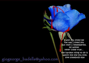Blue Rose Many Quotes Image Picture Code