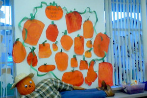 This is our diverse Pumpkin Patch. I love to see the uniqueness each ...