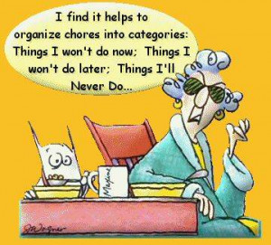 find it helps to organize my chores into categories: Things I wont ...