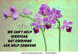 motivational quote about life with a beautiful purple orchid on a ...
