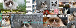 tardersauce_the_grumpy_cat-1591307.jpg?i