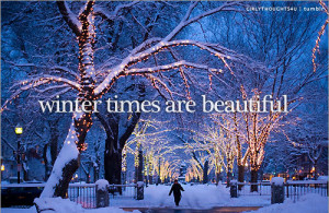 Winter Times Are Beautiful