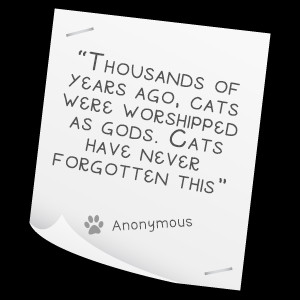 Related Pictures pet ownership blog funny famous and cute quotes about ...