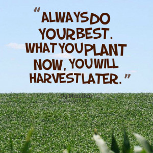 Quotes Picture: always do your best what you plant now, you will ...