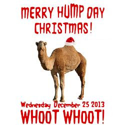 merry_hump_day_camel_christmas_greeting_cards.jpg?height=250&width=250 ...