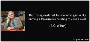 ... is like burning a Renaissance painting to cook a meal. - E. O. Wilson