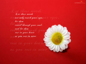 Labels: Love Quotes HD