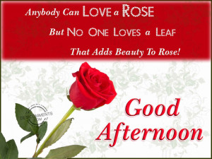 Good Afternoon Quotes Sms