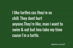 Like Turtle Quotes