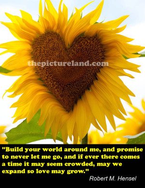 Heart Shaped Sunflower With Romantic Quotes