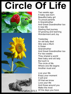 Poems About Life Live your life