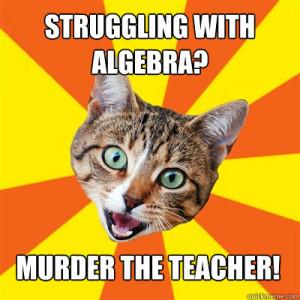 Struggling With Algebra? Cat Meme