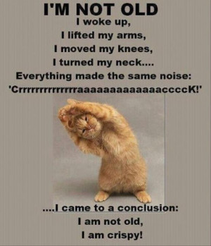 tagged with funny quotes 41 pics funny pictures