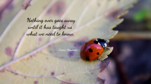Nothing ever goes away... quote wallpaper