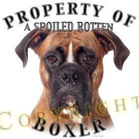 boxer dog quotes | Boxer Dog Image