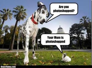 funnydogsbigsmallphotoshoppicture Your mom is photoshopped