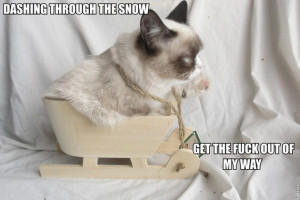 Grumpy Cat Christmas Quotes Grumpy Cat 39 s Christmas