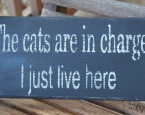 ... Rustic, Wall Sign, Funny Quote, Home Quote, Hand Painted, Home Decor