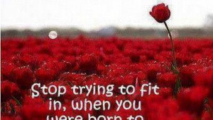Stop trying to fit in, when you were born to stand out...
