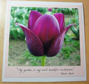 Love Quotes With Tulip In It