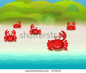 ... funny animated crabs fossil crabs from above powers oregon my blue leg