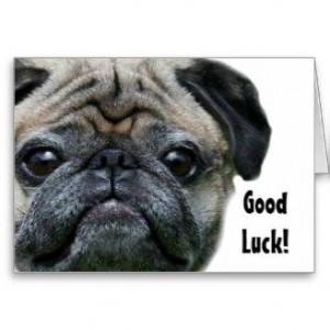 Good Luck Boxer Dog...