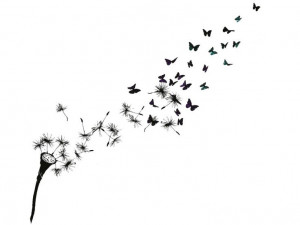 into butterflies...