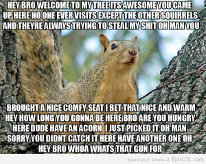 Squirrels are so damn annoying while I'm in deer hunting.