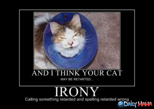 BLOG - Funny Ironic Sayings