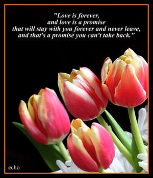 love-and-friendship-quotes-Roses--Flowers...--QUOTES-%2525252525252526 ...