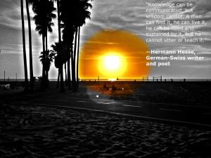 Herman Hesse 39 s Quotes