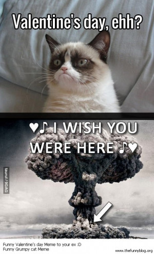 Valentine's Day Through These Eyes Of Our Favorite Grumpy Cat