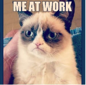 Grumpy Cat Work Rants
