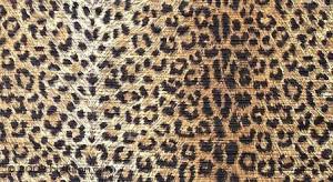 Cheetah print Image