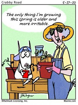 ... won't be true but it's funny and made me laugh... Maxine Spring Quote