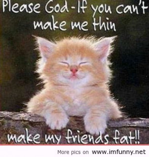 Funny animals and funny sayings