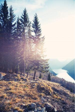 beautiful landscape portrait sun mountains nature forest scenery scene