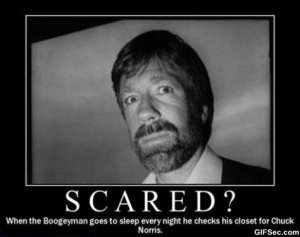 chuck-norris-funny-pictures.jpg