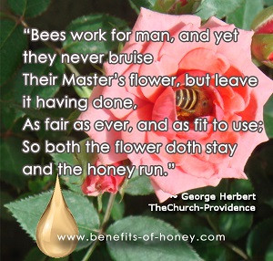 Bees Work For Man And Yet They Never Bruise Their Master's Flower ...