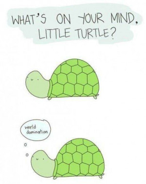What's on your mind little turtle? World domination