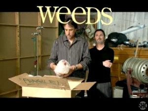 Kevin Nealon Quotes From Weeds http://www.popscreen.com/tagged/Kevin ...
