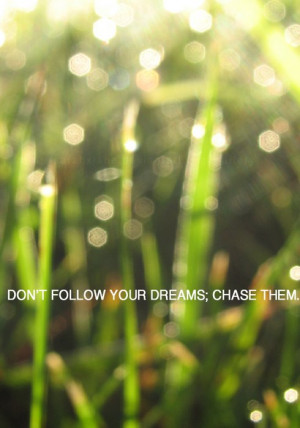 chase your dreams, dreams, green, quotes, saying, words