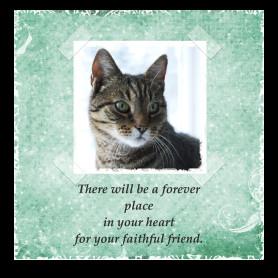 Free Cat Sympathy Card