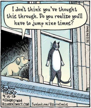 ... Funny cartoons , Funny Pictures // Tags: Funny cartoon - Suicide cat