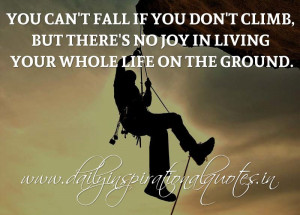 You can't fall if you don't climb, but there's no joy in living ...