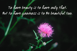 beauty quotes for beautiful eyes beauty quotes just have beauty