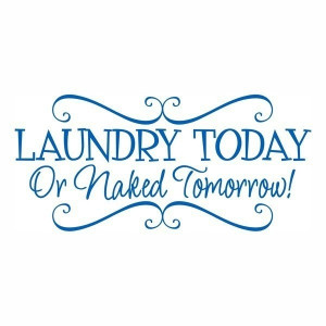 Laundry Today or Naked Tomorrow vinyl wall by OnDisplayGraphix