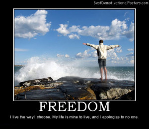 freedom-independence-choice-best-demotivational-posters